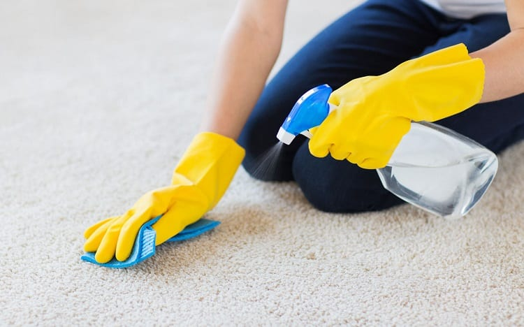 Cleaning Carpet with Paper Towel