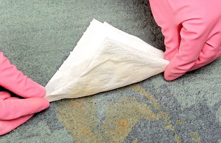 Using Paper Towel For Cleaning
