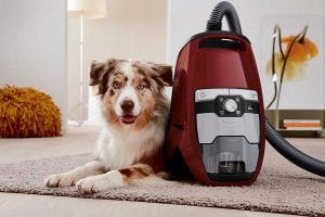 Miele Blizzard CX1 Cat and Dog Powerline Vacuum Review
