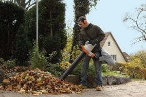 Stihl SHE 71 Garden Vacuum And Leaf Blower - UK Review